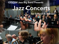 Big Jazz Band Concert Series