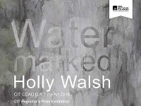 CIT Registrars Prize Exhibition - WATER MARKED by Holly Walsh