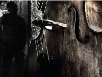 David Whitla // Double Bass Recital