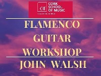 FLAMENCO GUITARIST JOHN WALSH